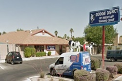 doggie district pet resort with multiple locations throughout las vegas! dog care pet care in las vegas nevada grooming and boarding