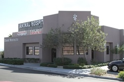 grand montecito animal hospital picture of building exterior on grand montecity pkwy, veterinarians in las vegas nevada