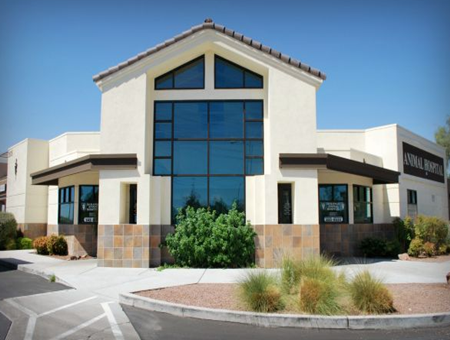 veterinarians in las vegas, vets in vegas