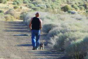 travel with pet to the desert